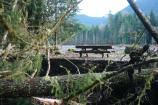 A lone picnic table sits amid the wreckage of Sunshine Point Campground
