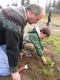 A father and son team plants native species at Sunrise