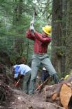 Volunteers from Washington's National Park Fund help rebuild a section of the Wonderland Trail between Longire and Cougar Rock.