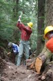 Volunteers from Washington's National Park Fund help rebuild a section of the Wonderland Trail between Longmire and Cougar Rock.