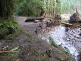 Another washed out stretch of the Carbon River Road