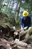 A volunteer from Washington's National Park Fund helps rebuild a section of the Wonderland Trail east of Longmire.