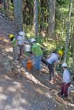 Volunteers busily work on rebuilding a section of the Wonderland Trail above Cougar Rock on National Trails Day, June 2nd.