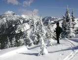 Hurricane Ridge is popular for skiing, snowshoeing and winter sightseeing..