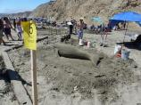 2012 Sand Sculpture Contest: Adult/Family Group Entry #05: Bobo Returns, by the Osfeld family