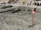 2009 Sand Sculpture Contest: Adult/Family Group Honorable Mention: Entry #06: Mamma Ichthyosaurus, by the Jones, Schiltgen, & Parker Families