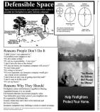 People, Parks & Fire Newspaper page 05