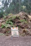 Resource Recovery Center: This pile of leafy vegetation debris will be ground into fine pieces and turned into compost at the Resource Recovery Center in Bolinas. Small diameter woody material is chipped into mulch.