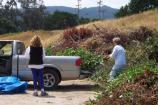 Olema Chipping Program: Over 300 truckloads of vegetation debris were dropped off at a community brush drop off site in Olema. The National Park Service is providing a location for this drop-off until a long-term site can be established for the community.