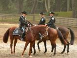 Photograph of the mounted officer graduation.