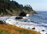 Coast in Redwood National and State Parks