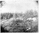 The Royal Marine vegetable garden, probably in the spring of 1860. In the background the Commissary (storehouse) is already complete, while another structure is underway.