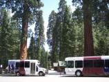 Two Sequoia Shuttle Buses at the Giant Forest Museum