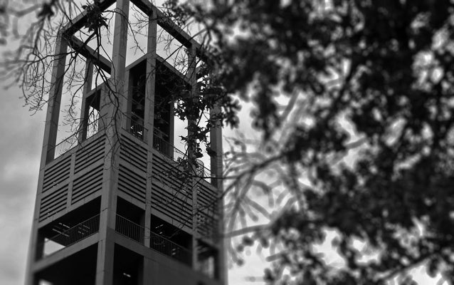 B&W photo; steel tower on left and tree on right