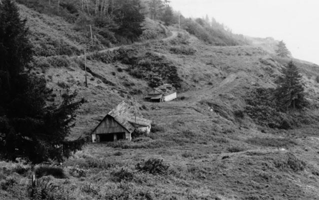 B&W two buildings on left side of hill with evergreen tree