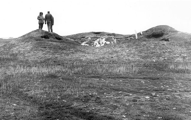 People survey the Birnirk National Historic Landmark from atop a mound site.