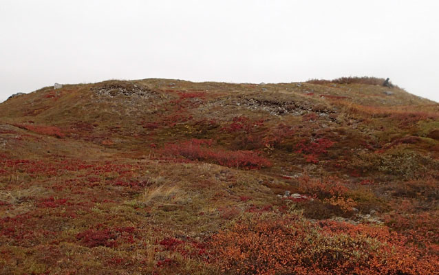 Hill, where Gallagher Flint Station site is located, covered in red tundra.