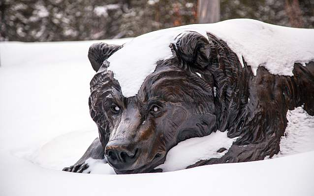 a bronze statue of a bear lying on its belly is blanketed in snow