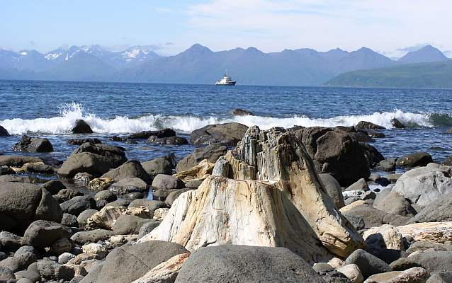 a petrified log stump on a rocky beach with mountains and a boat in the distance