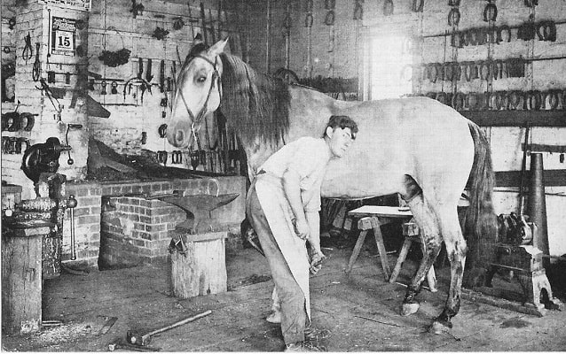 blacksmith shoeing a horse at homestead's blacksmith shop