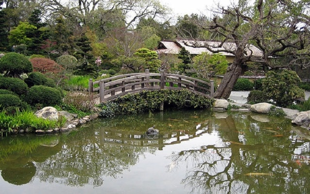 Color photo of pond with walking bridge and vegetation.