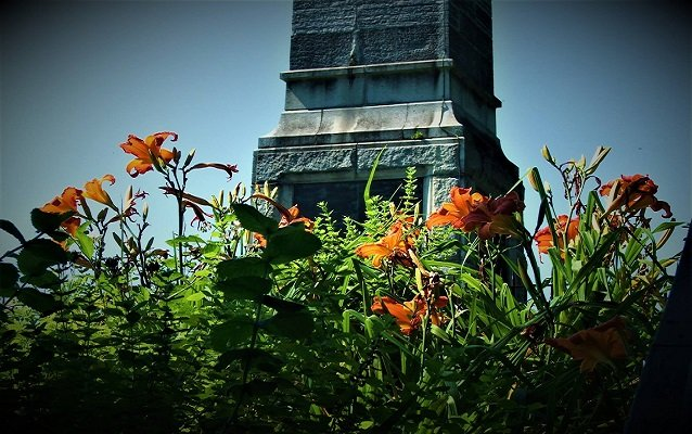 Through a field of orange and green wildflowers, a view of a tall grey obelisk.