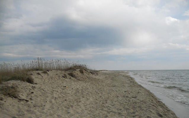 Sandy beach of Tangier Island