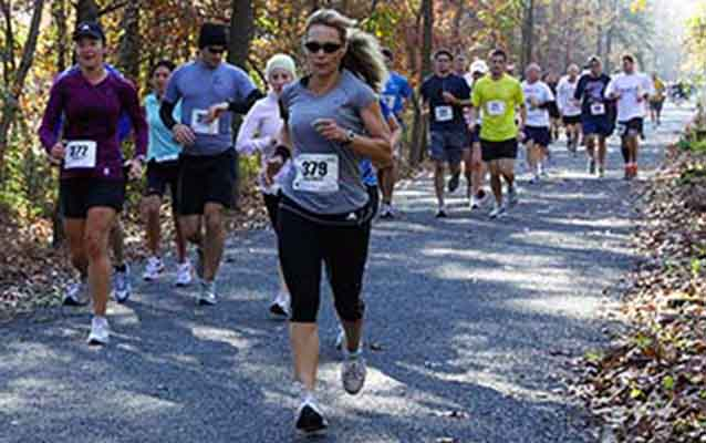 Marathon participants race along a shaded trail.