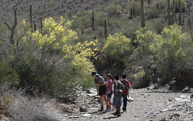Diverse youth and a park ranger examine a plant encountered on a hike in a wash in Saguaro National Park.