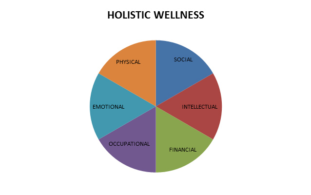 Holistic wellness components of the Healthy Awards Program