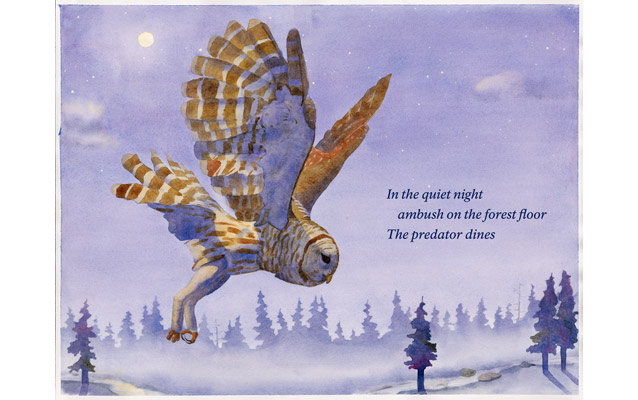 Image from new wayside exhibit of an owl about to pounce on prey