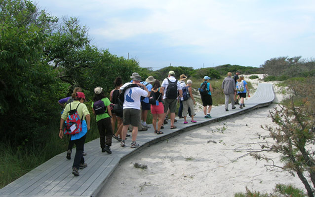 Group with day packs hike along boardwalk trail through swale between dunes.