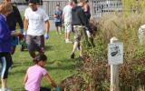 Volunteers participate in Fire Island National Seashore's