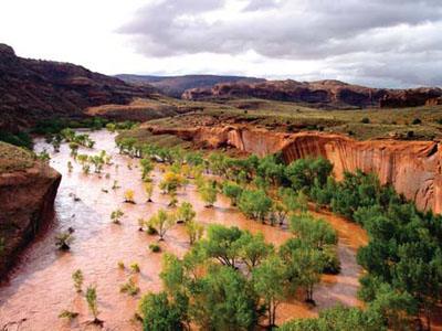 One result of climate change may be more, larger  floods, like this flash flood in Glen Canyon NRA