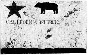 The Original Bear Flag