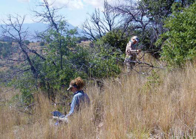 Two NPS staff in the field monitoring upland vegetation