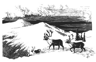 drawing of three caribou crossing a snowy mountain