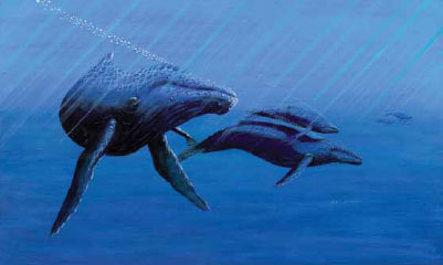 painting of two whales underwater