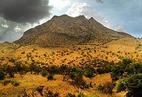 Picture of a mountain and yellow and green vegetation under a dramatic sky of dark and light clouds