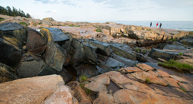Black intrusive igneous rock at Schoodic Point.