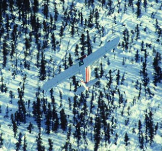 a small plane flying low over a snowy forest