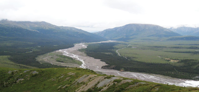 a thin river surrounded by spruce trees leading off toward two green mountains