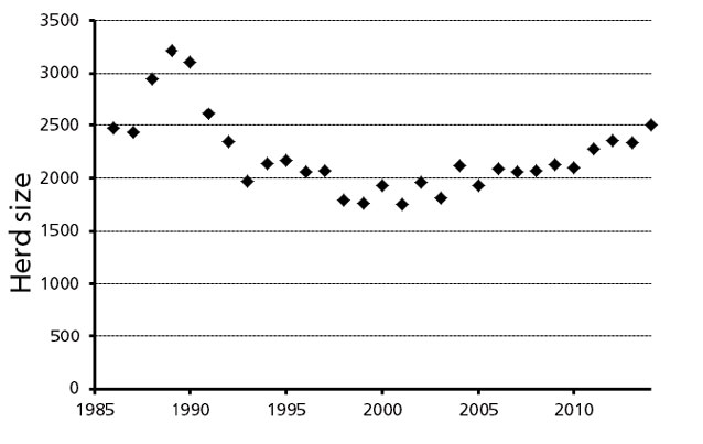chart indicating caribou populations peaking in the 1970s before declining rapidly