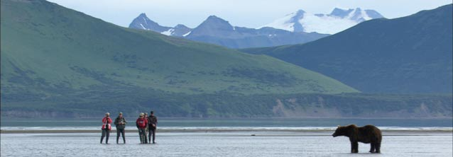 five people standing near a grizzly bear on a tidal flat or river