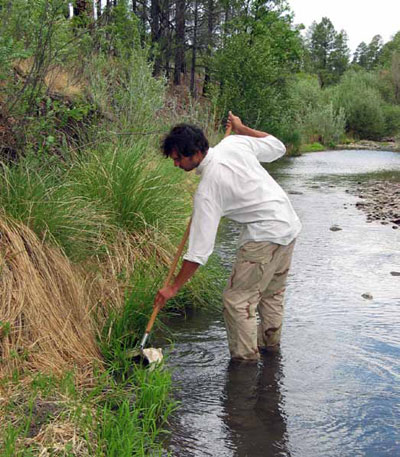 Collecting macroinvertebrate sample with a kick net at Gila Cliff Dwellings National Monument.