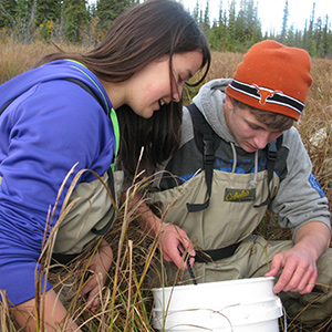 Student in waders kneel in a wetland and make observations