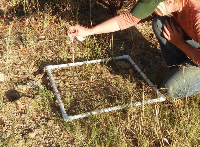Quadrat used for biological soil crust sampling