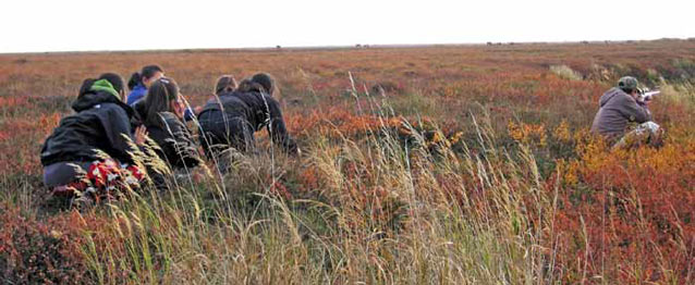 people kneeling in grass, one of them aiming a rifle at a caribou