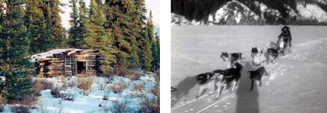 composite of two images; one of a log cabin in a snowy forest, other of a team of sled dogs