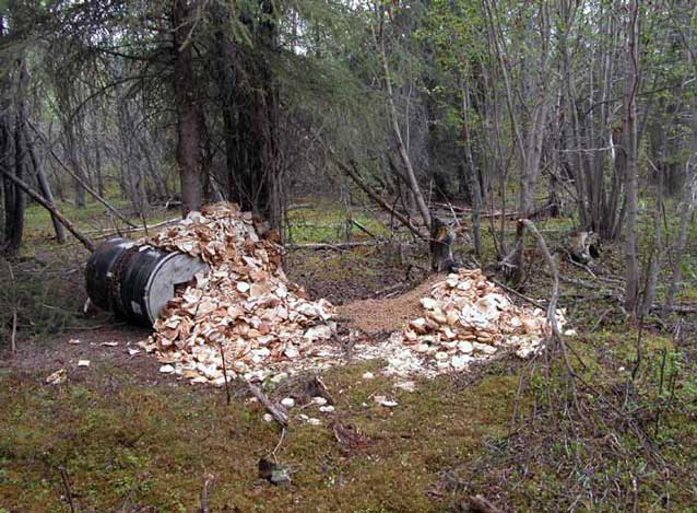 pile of food rubbish in a forest